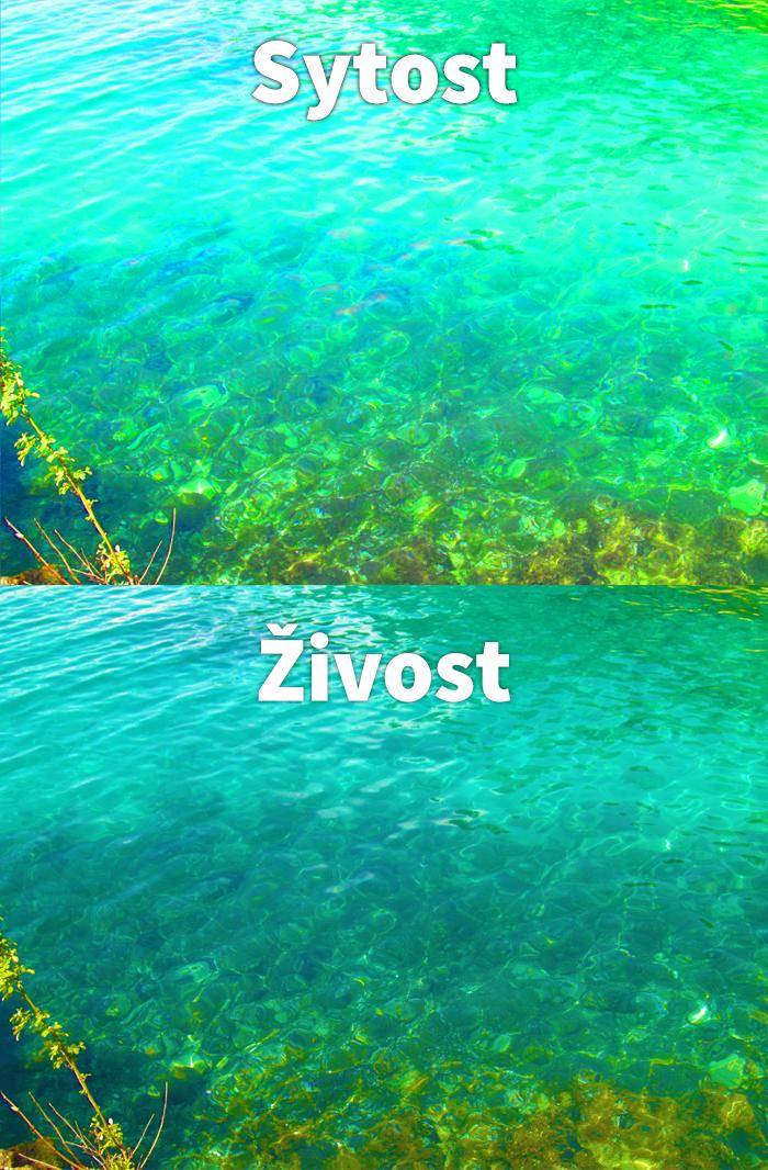 SytostZivost